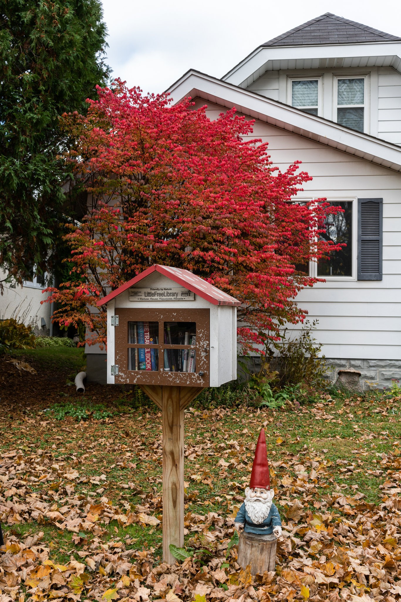 MN - Little Free Library photo from NY Times